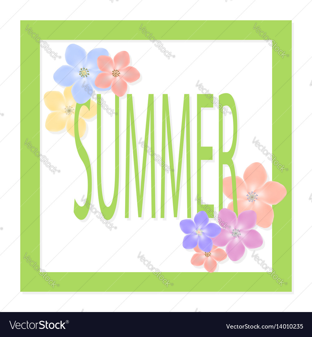 Summer sale background with beautiful colorful vector image