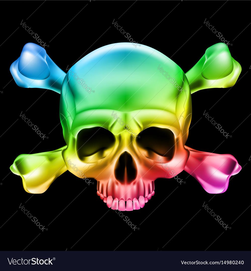 Multi-colored skull and bones on black vector image