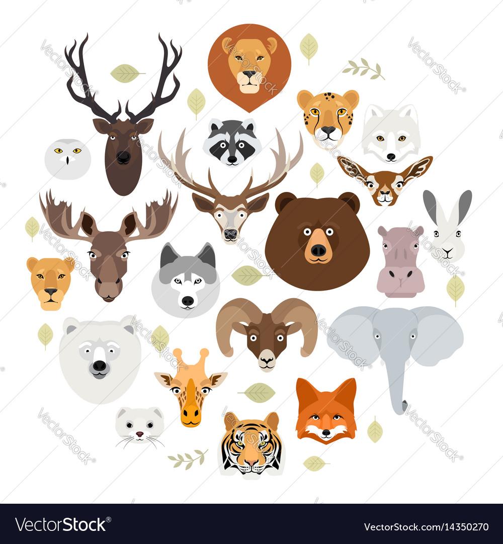 big animal face icon set cartoon heads of fox vector image