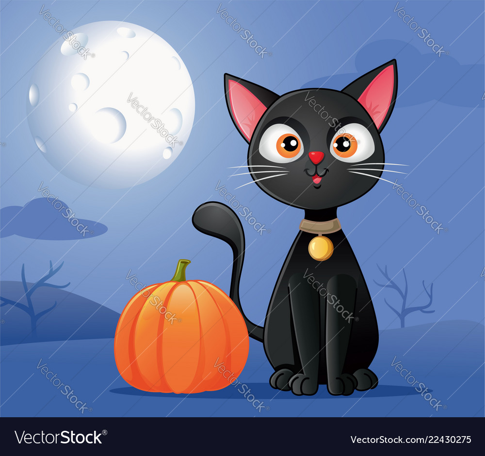 Black cat with halloween pumpkin cartoon