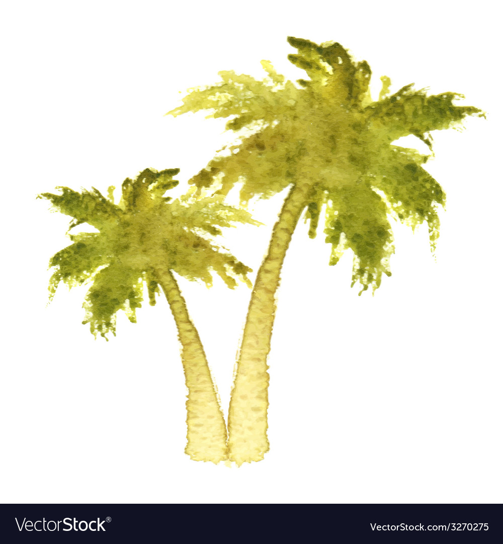 Palm Trees Royalty Free Vector Image Vectorstock