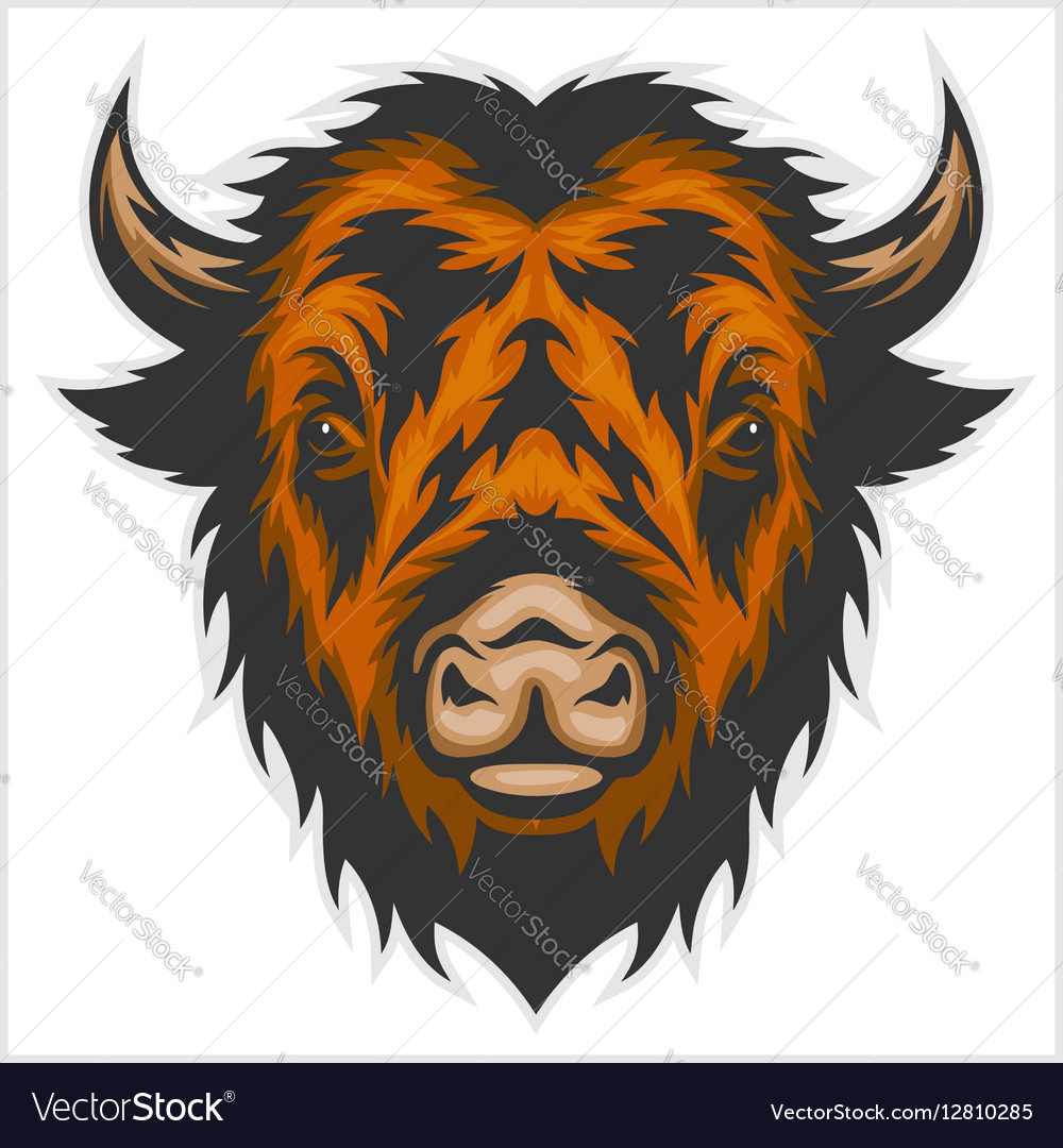 Buffalo head isolated on white vector image