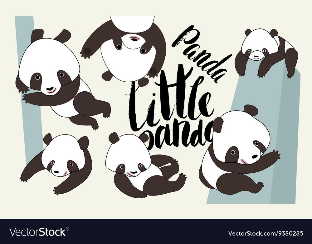 Cartoon panda bear set with lettering