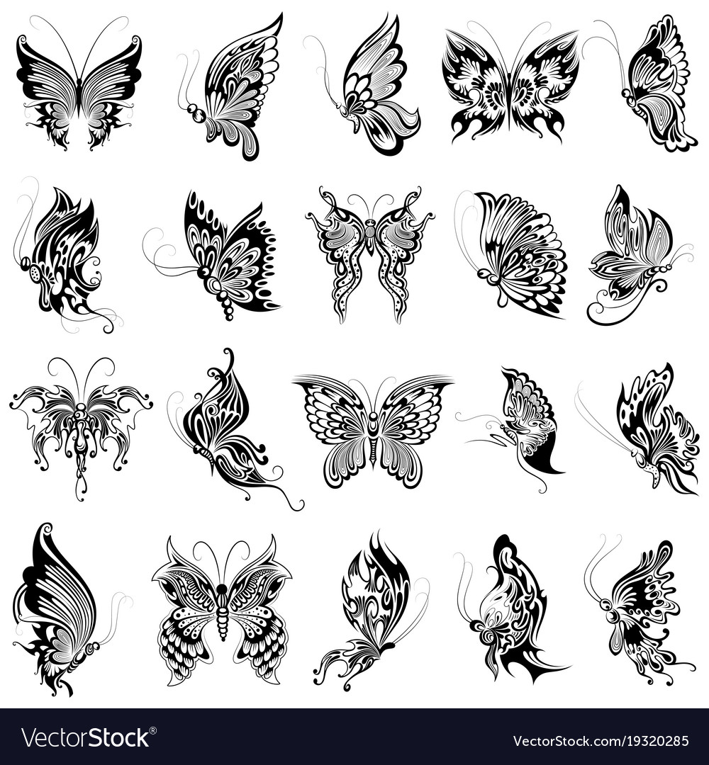 Tattoo art design butterfly collection