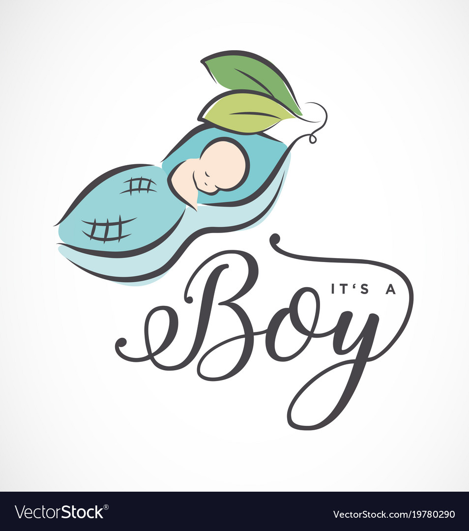 Baby boy design element for greeting cards vector image m4hsunfo