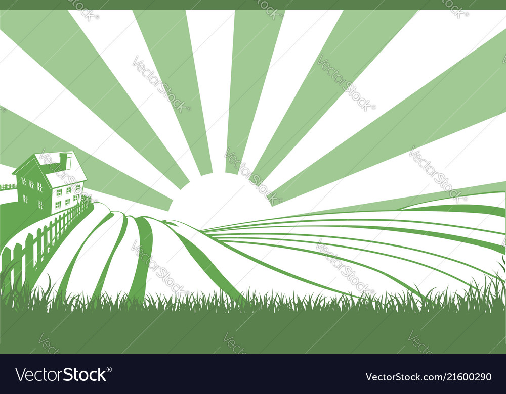 Sunshine over hill fields