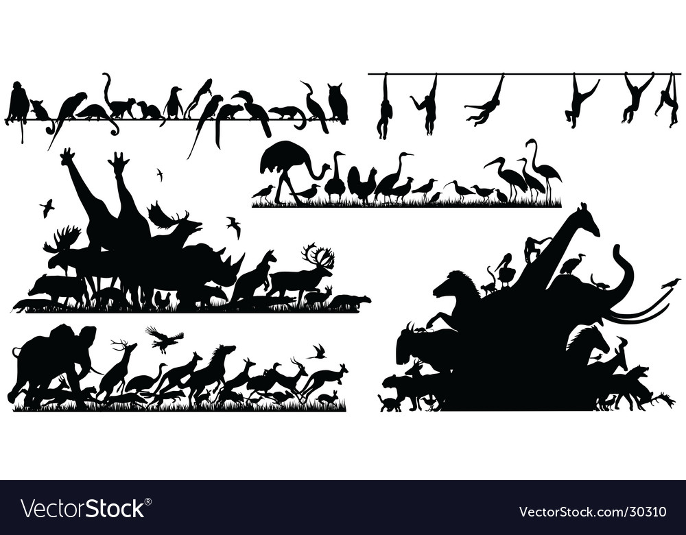 Animal foregrounds vector image