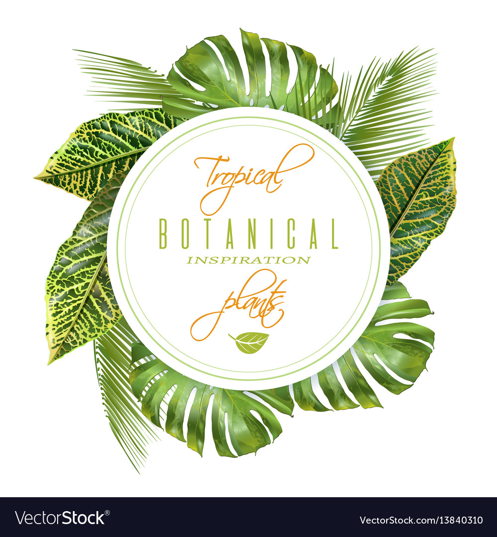 Tropical round banner