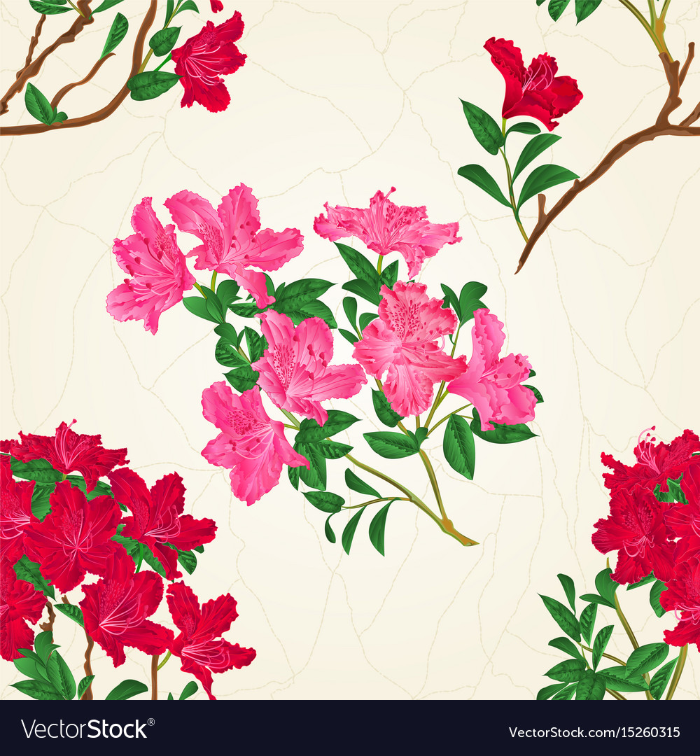 Seamless texture red rhododendron branch vector image