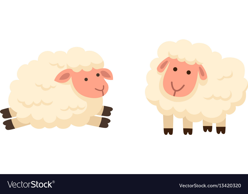Isolated sheep on white background vector image