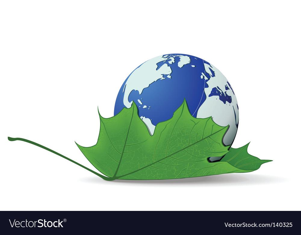 Globe on leaf vector image