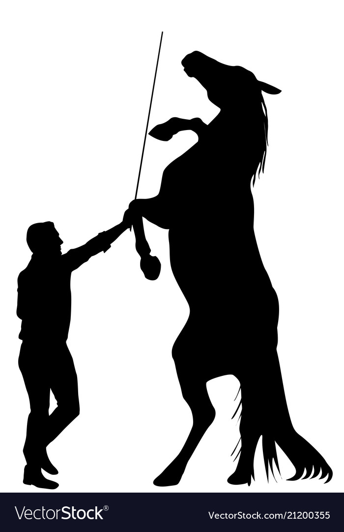 Black silhouette of man training a horse to