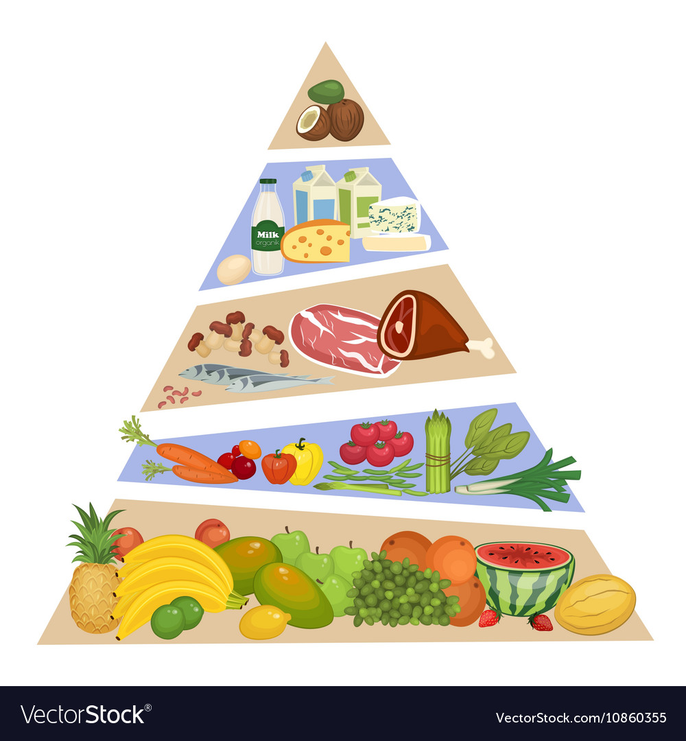 Food Pyramid Concept in Flat Design