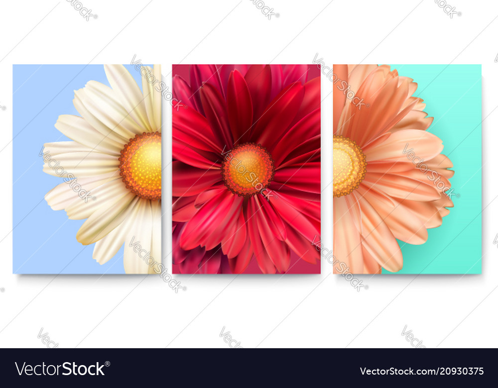 Set of spring covers with bud of flowers close-up