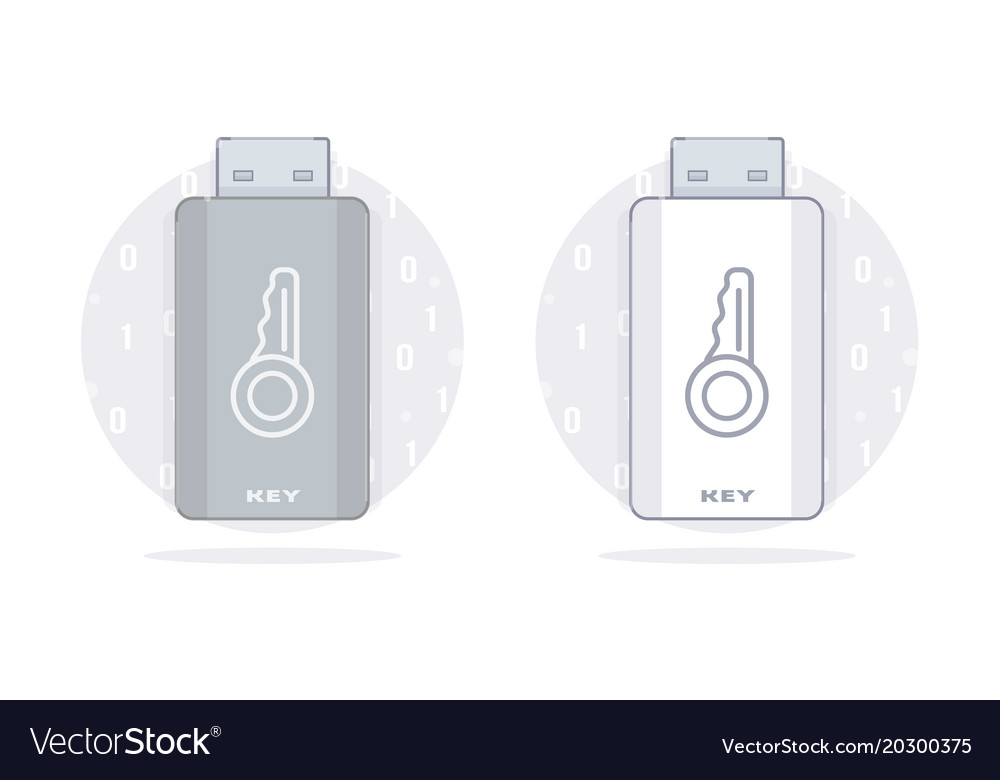Usb key flash drive memory vector image