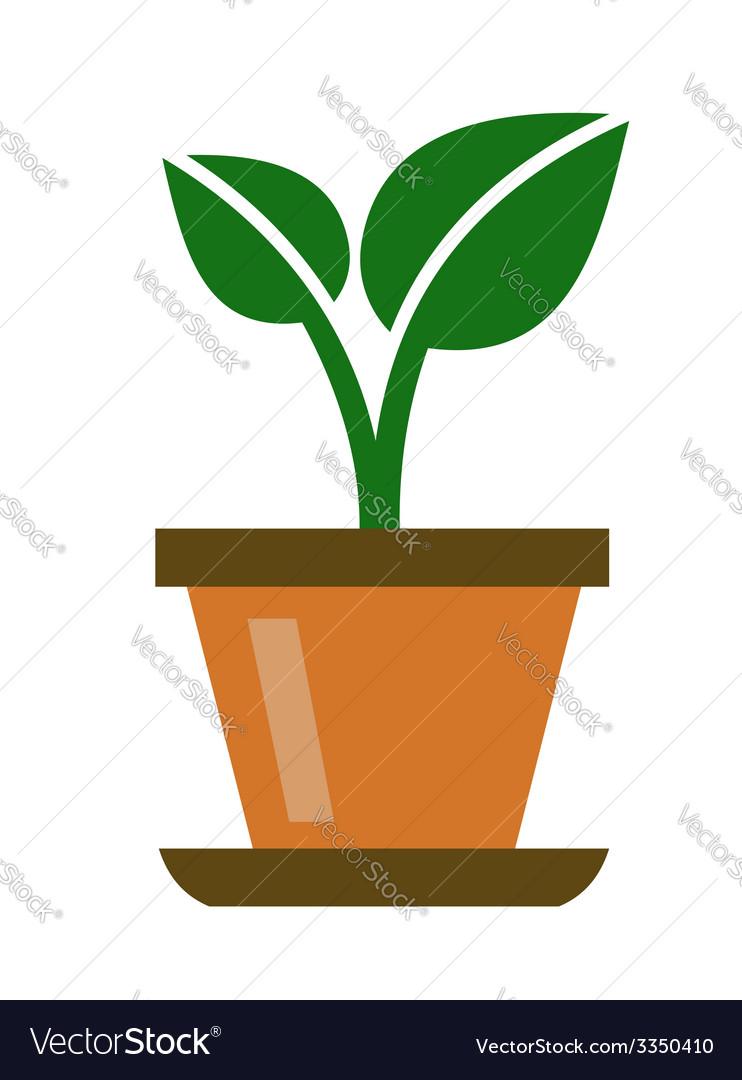 Green organic plant vector image