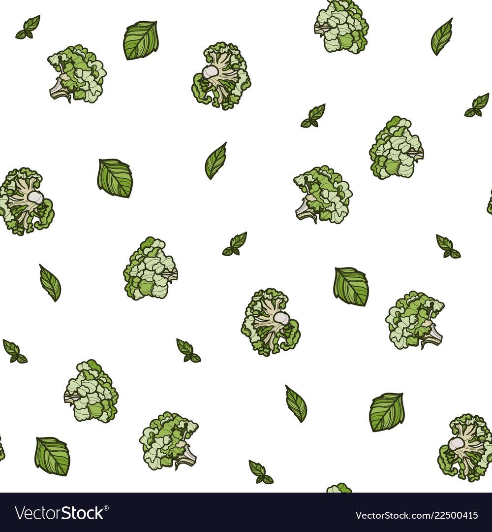 Broccoli seamless pattern on white background