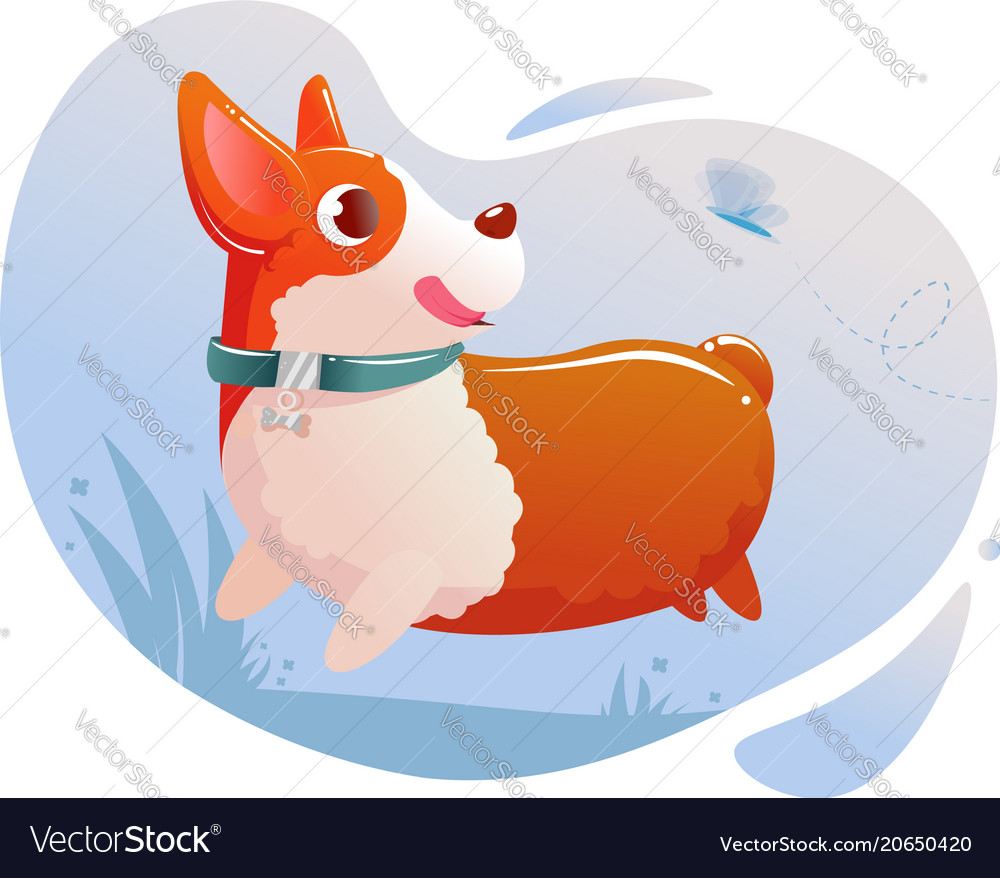 Happy cute dog corgi running on grass in a park