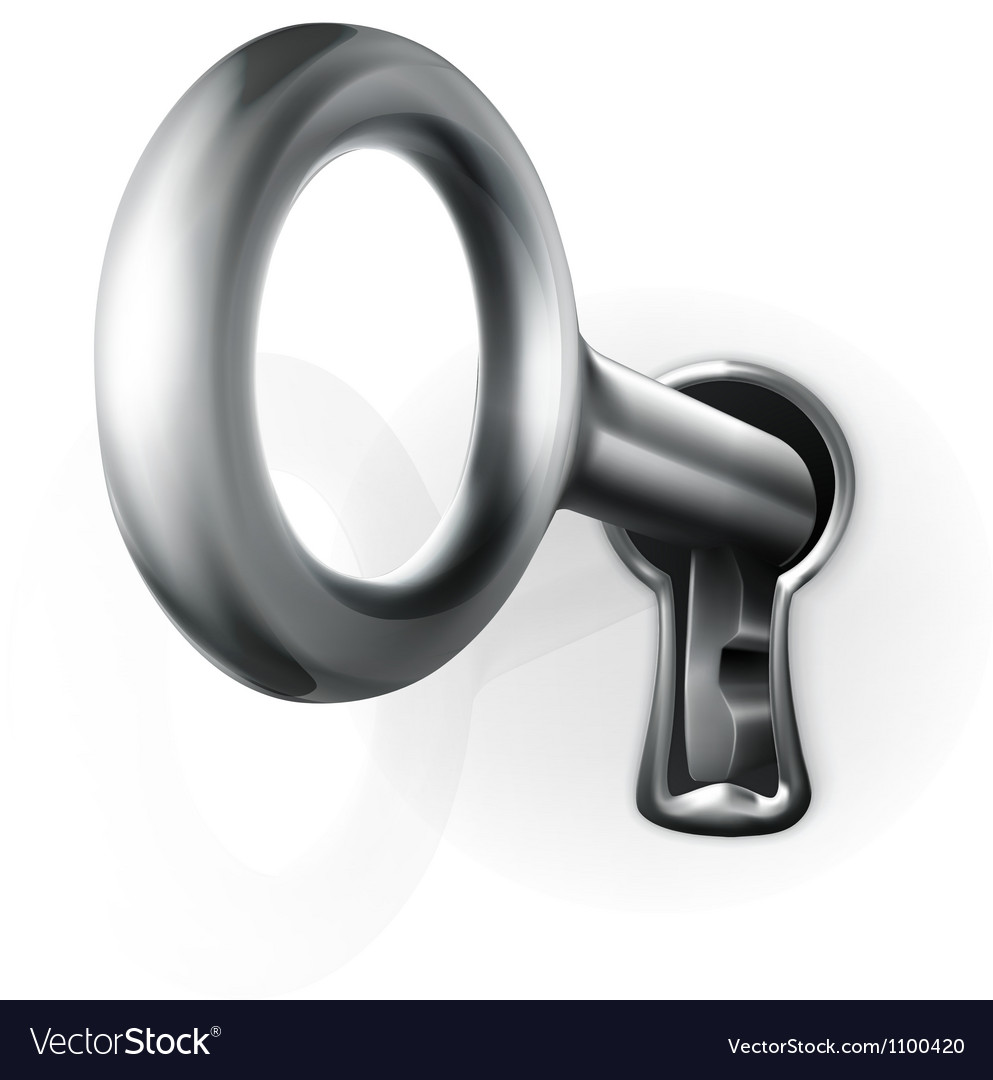 Key in keyhole vector image