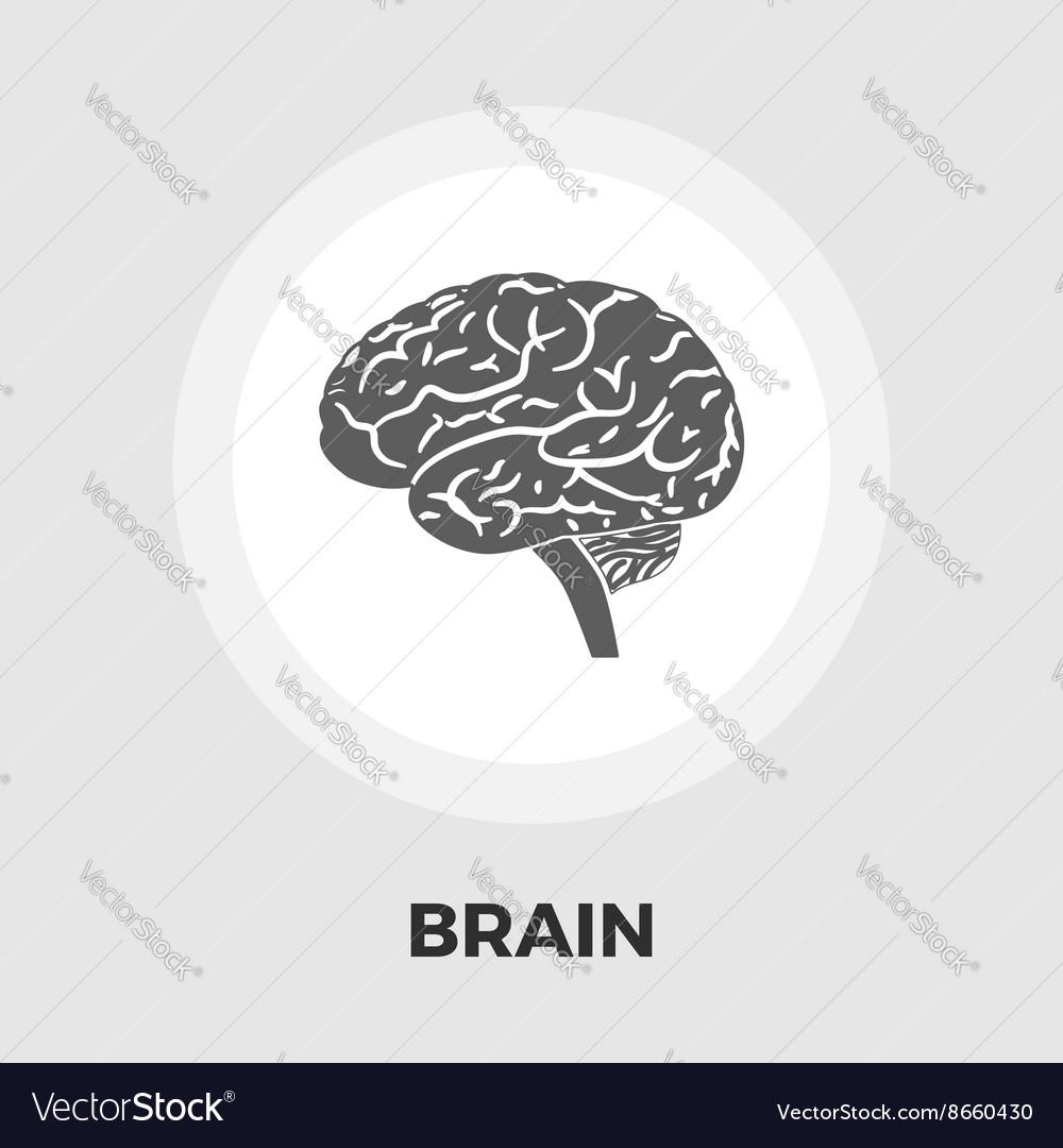 Brain flat icon vector image