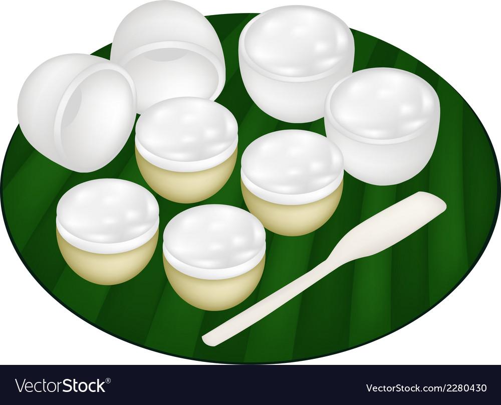Thai Dessert of Coconut Pudding on Banana Leaf vector image