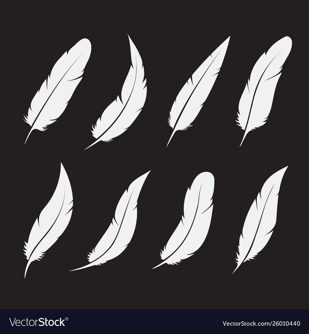 Group white feather on white background easy