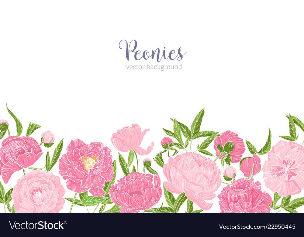 Elegant Floral Background Or Backdrop Decorated