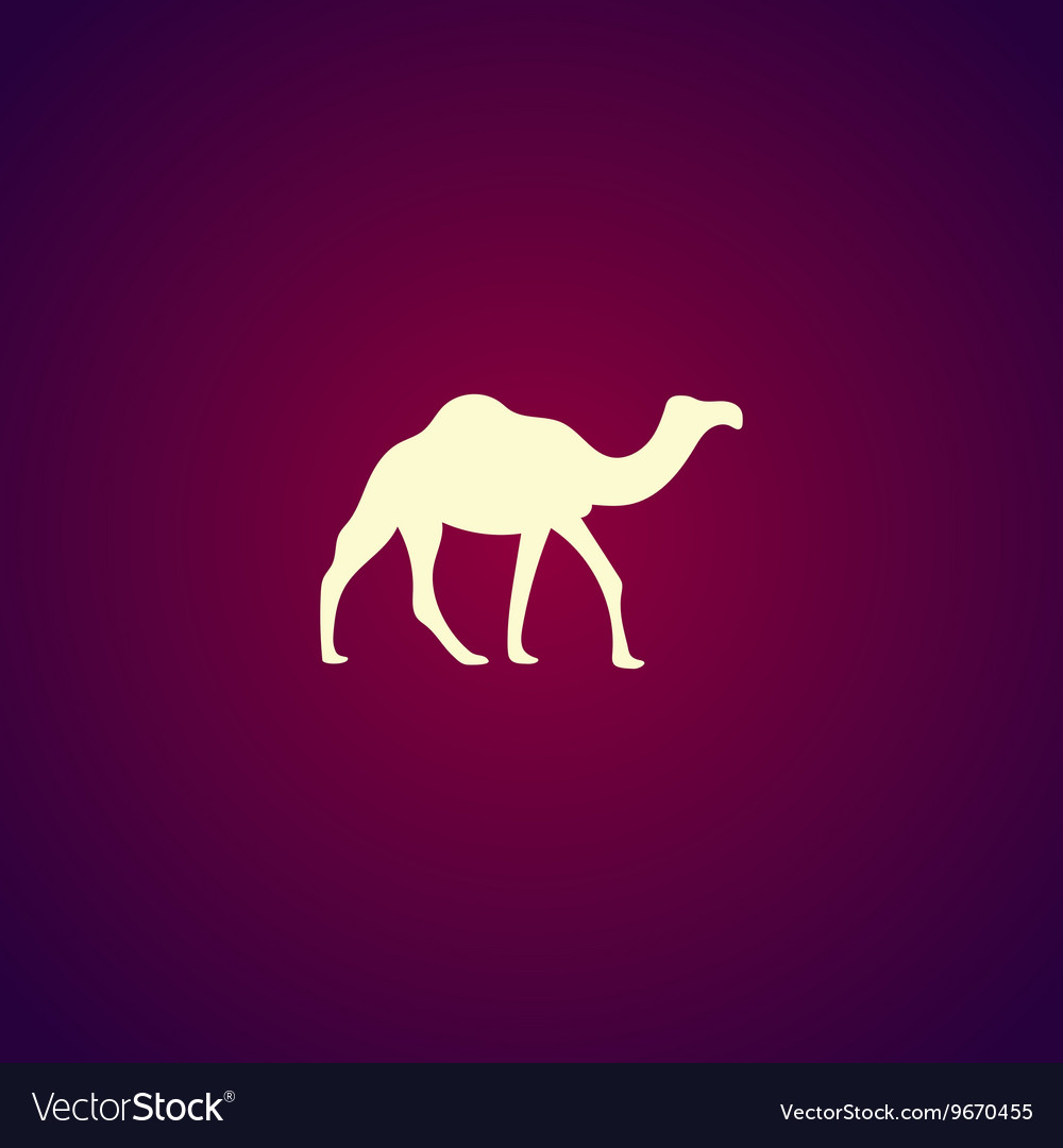 Camel Icon concept for design vector image