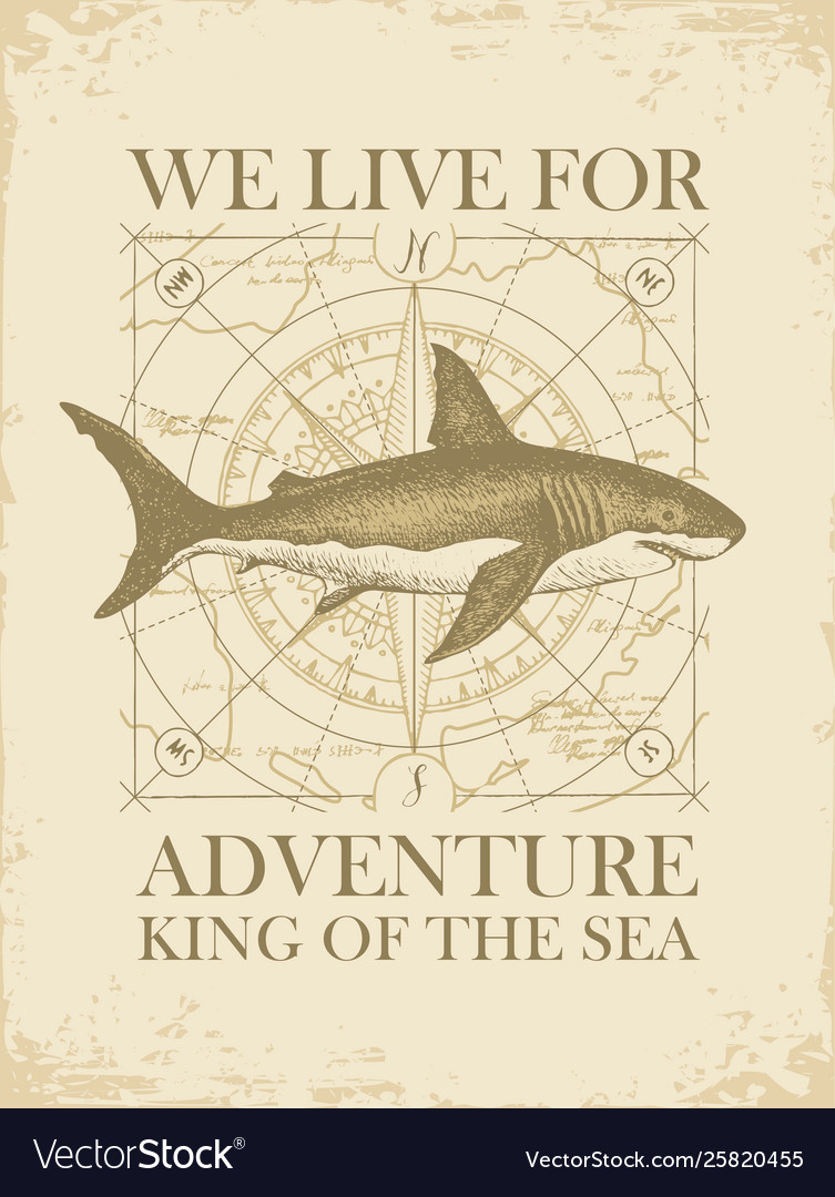 Retro travel banner with shark and old map