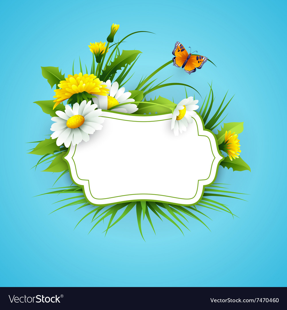 Fresh spring background with grass dandelions and