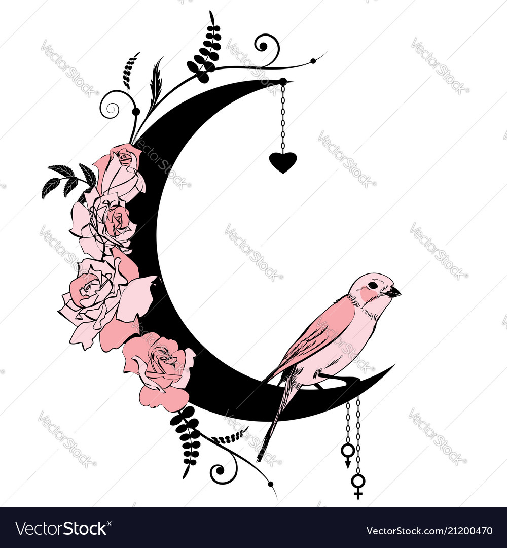 Floral frame with bird and rose