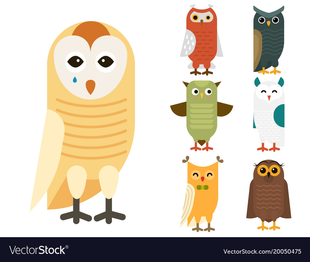 Cartoon owl bird cute character sleep sweet owlet