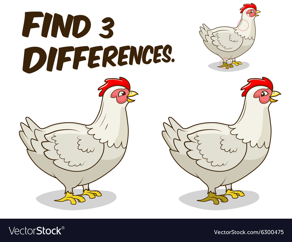 Find differences game hen chicken vector image