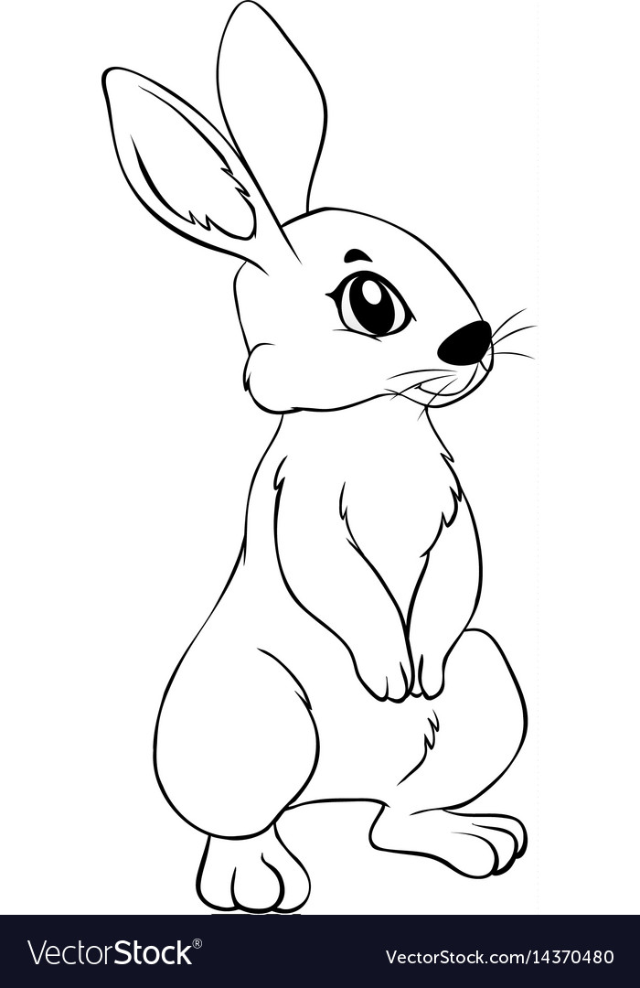 Animal outline for rabbit Royalty Free Vector Image