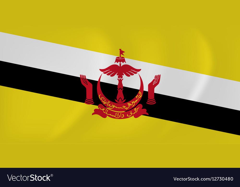 Brunei waving flag vector image
