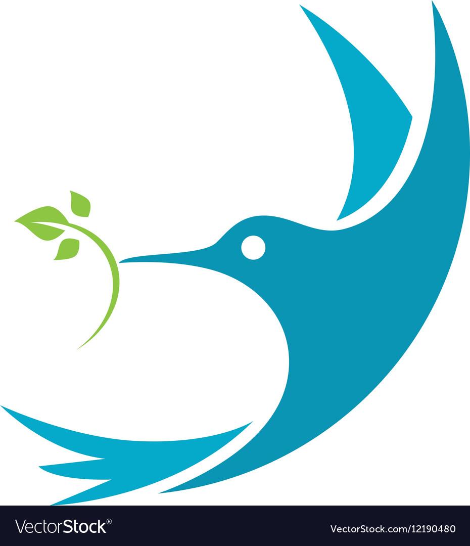 hummingbird logo template icon royalty free vector image