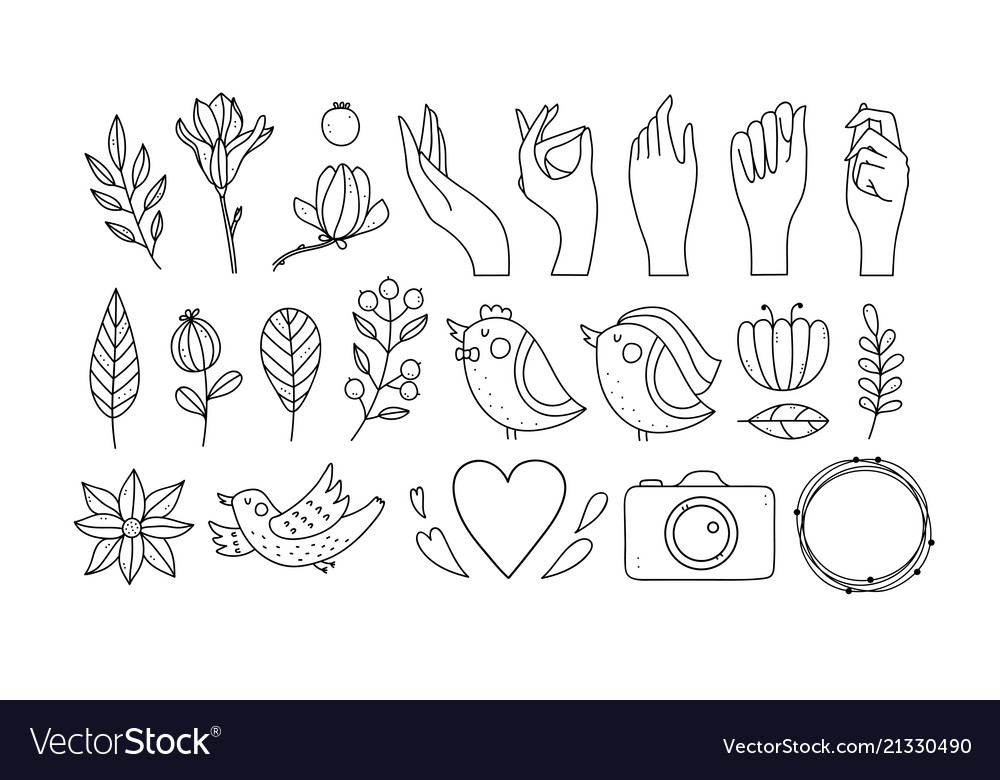 Wedding photo logo and plant products