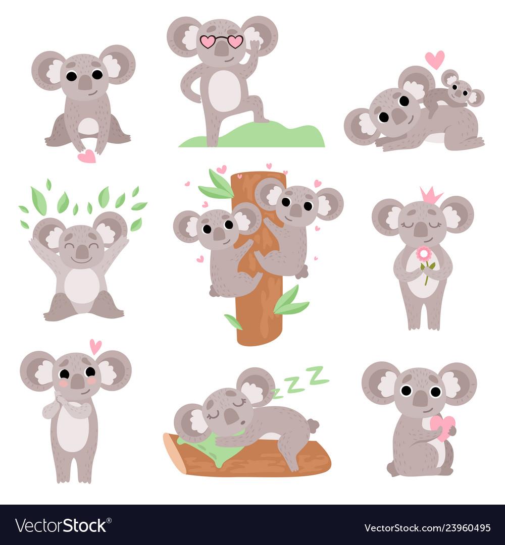 Cute coala bears set funny animal cartoon