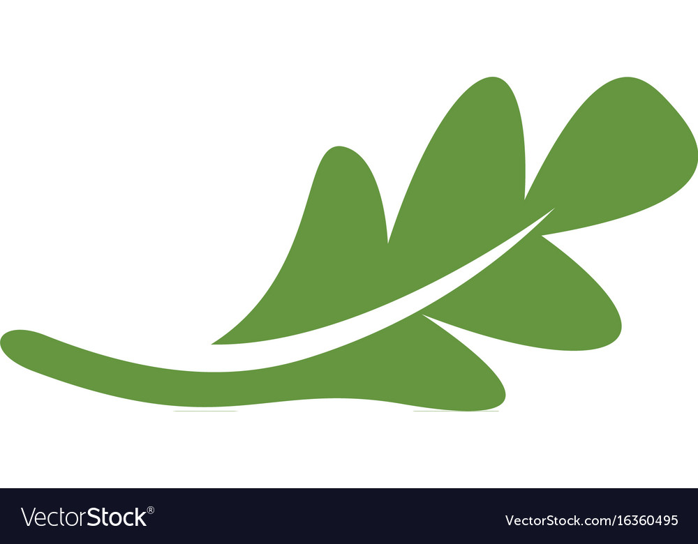 Oak leaf icon design template