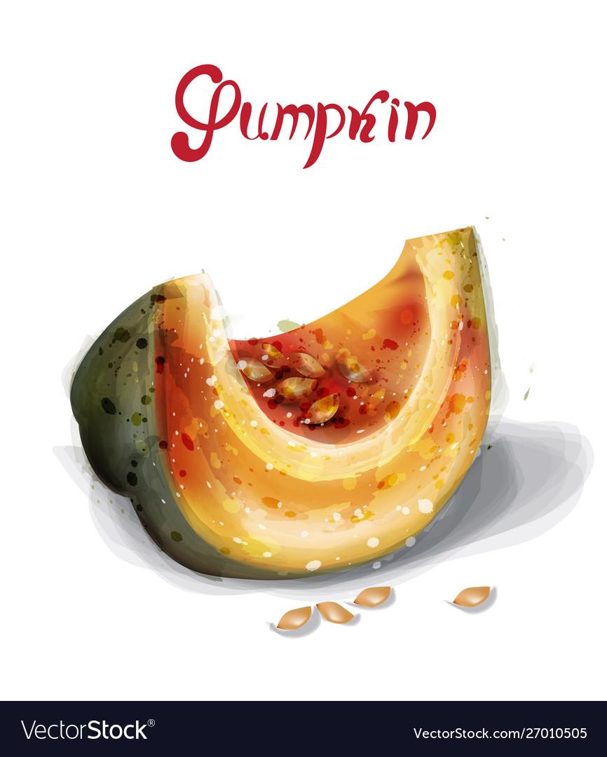 Pumpkin slice watercolor juicy yellow fruit