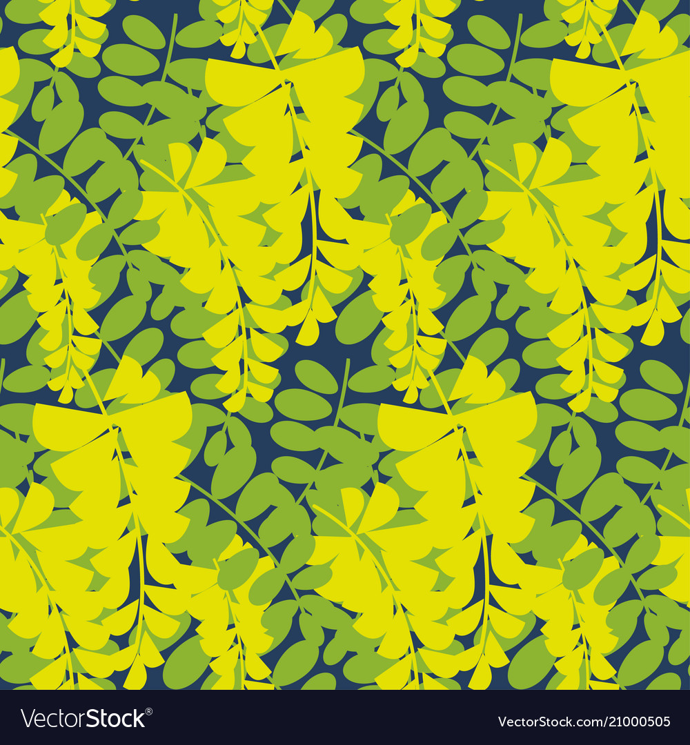 Yellow Acacia Tree Blossom Seamless Pattern Vector Image