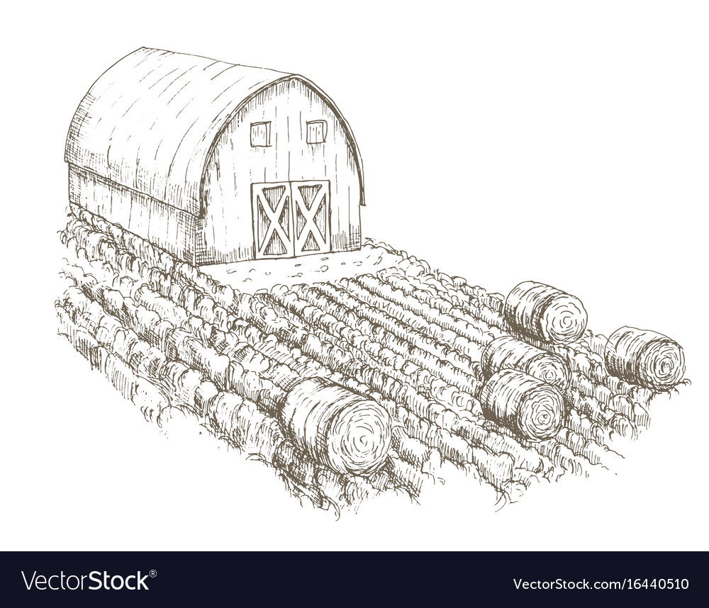 Farm house with fields of crops surrounding it vector image