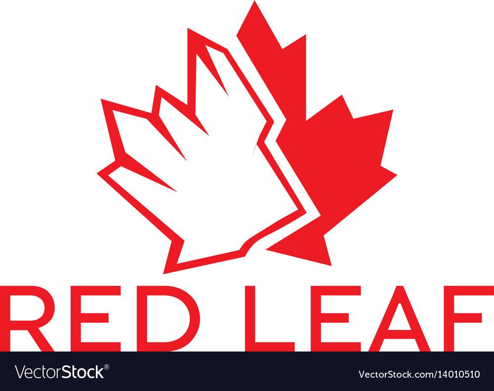 Red maple leaf logo design vector image