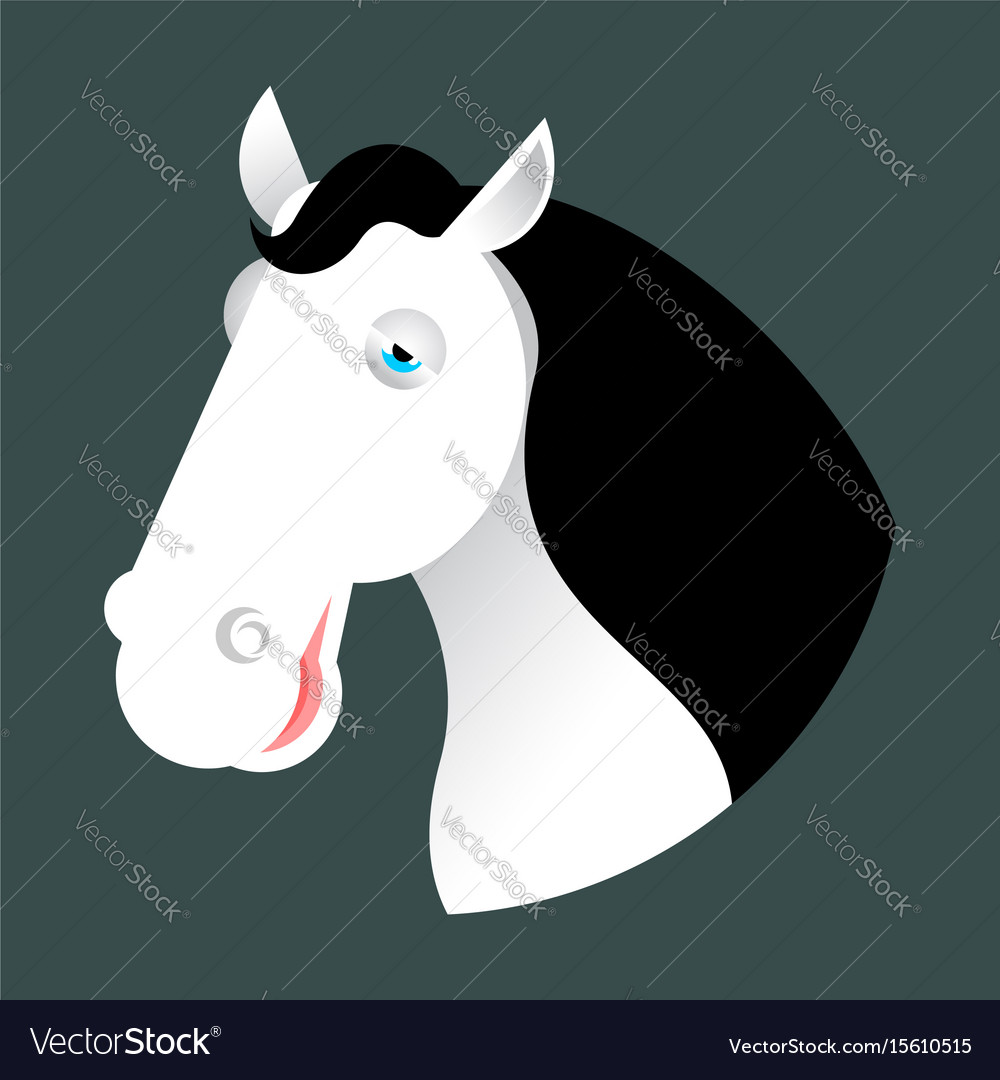 White horse head muzzle hoss isolated on white vector image