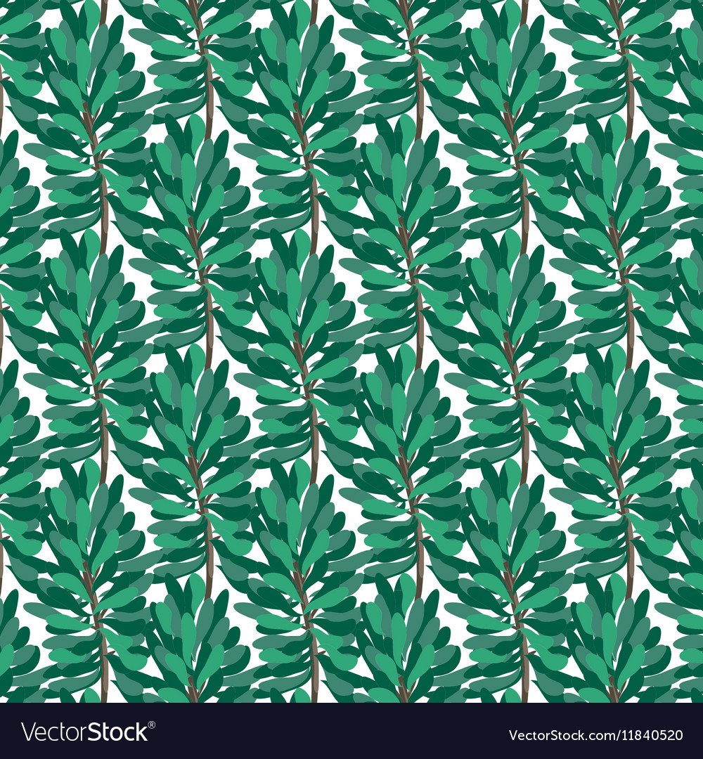 Green pine pattern on transparent background