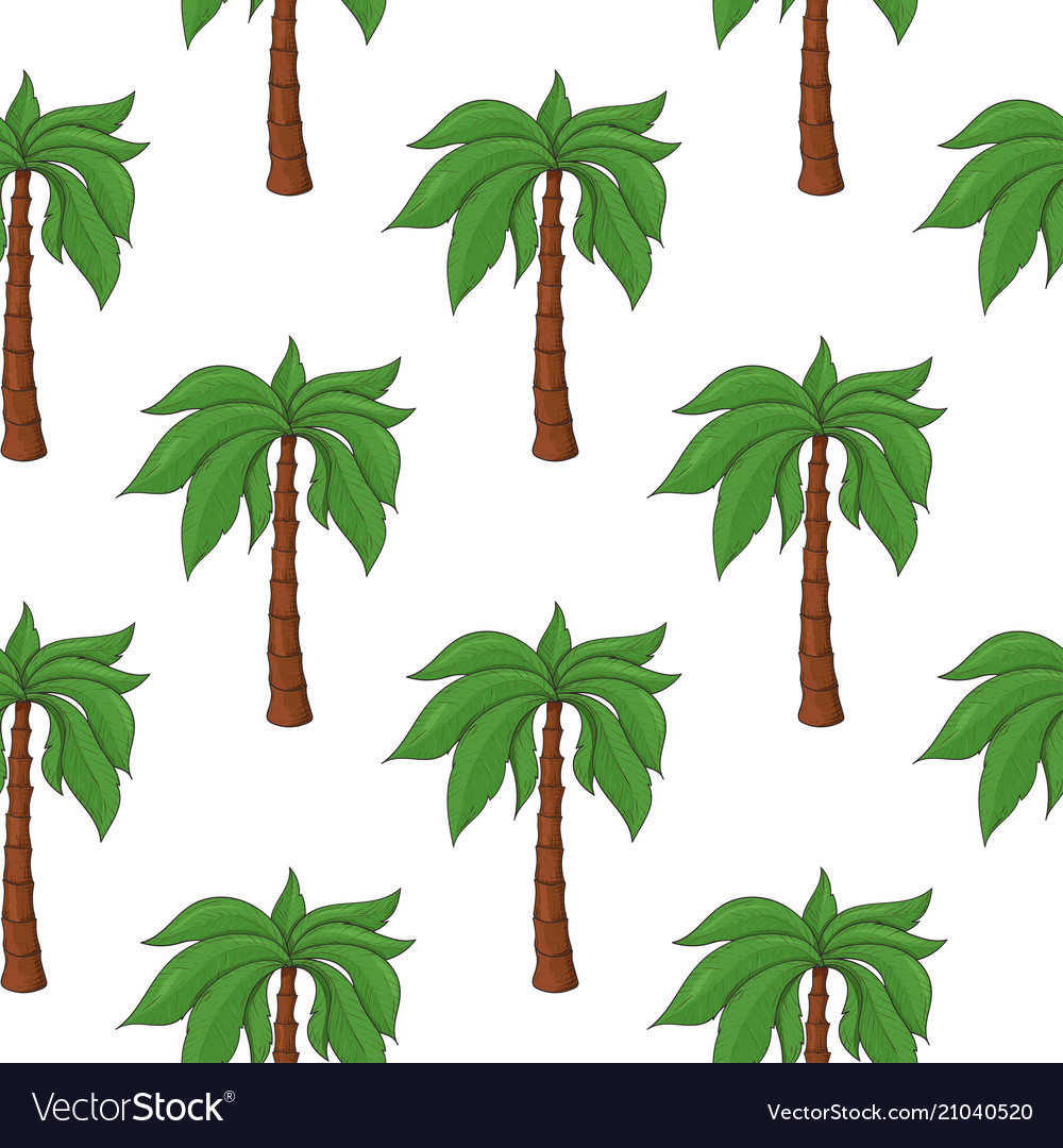 Palm trees as seamless pattern colored hand drawn