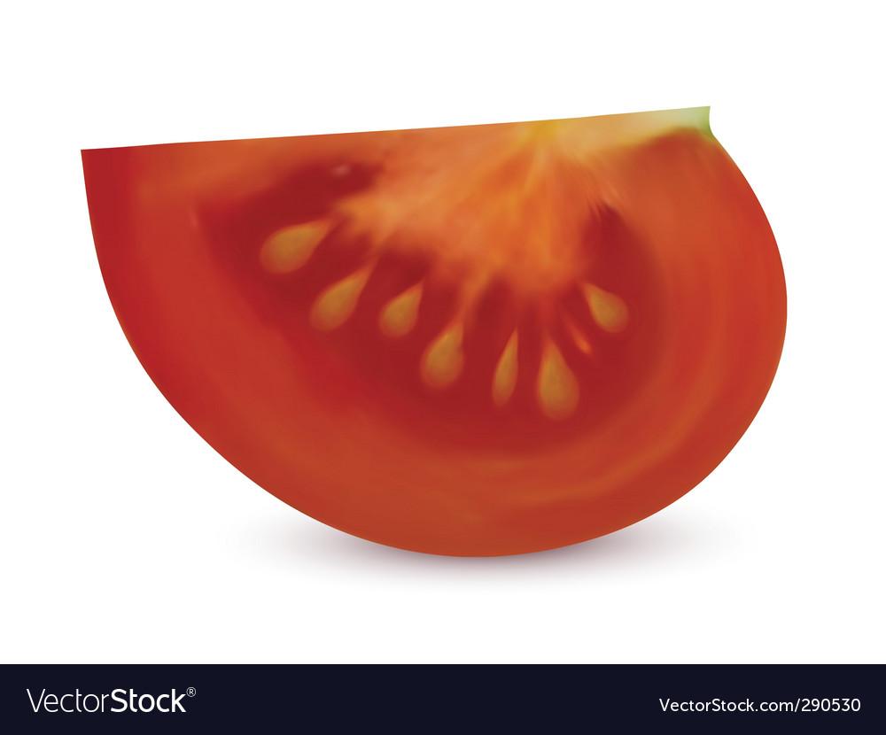 Tomato slice vector art - Download vectors - 290530