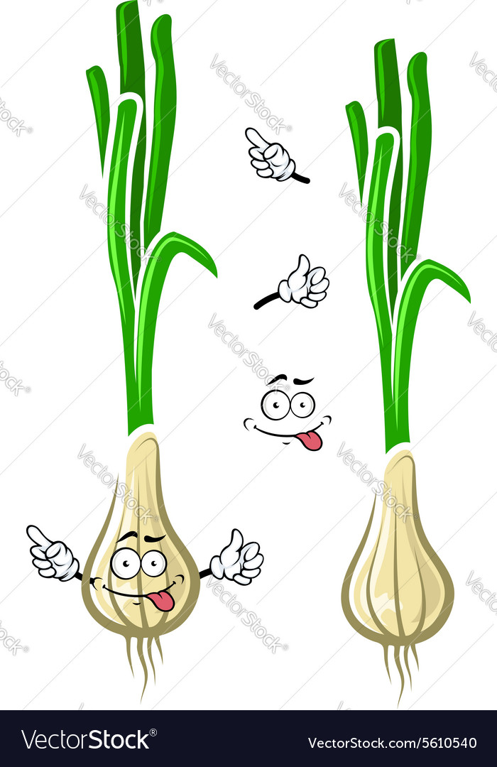 Cartoon green onion or scallion vegetable vector image
