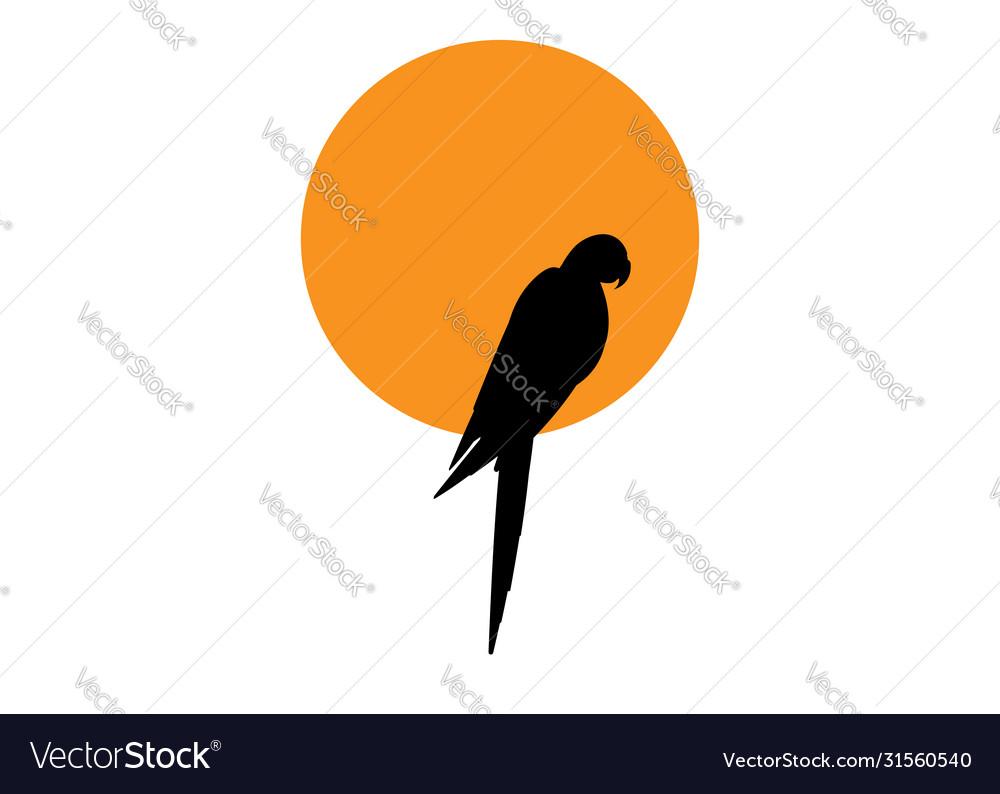 Parrot logo idea design macaw bird and orange sun