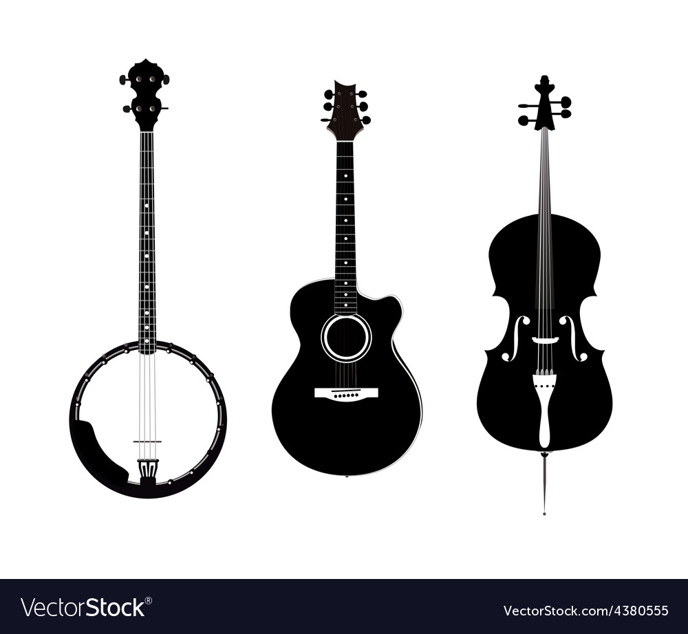Banjo Acoustic Guitar and Banjo vector image